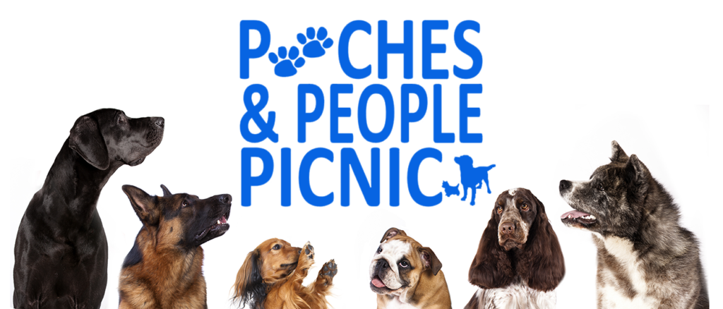 Multi Dogs Viewing w logo web 1024x438 - 4th Annual Pooches & People Picnic